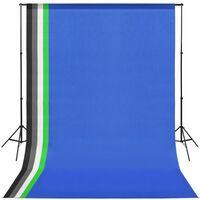 vidaXL Kit estúdio fotográfico c/ 5 fundos coloridos e moldura ajustável