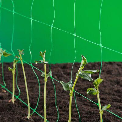 Nature Rede para plantas trepadeiras 1x10 m verde 6030429