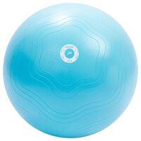 Pure2Improve Bola de exercícios 65 cm azul-claro
