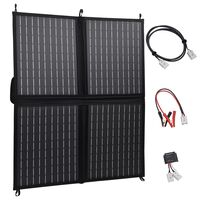 vidaXL Painel solar dobrável 80 W 12 V
