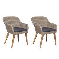 vidaXL Cadeiras de exterior c/ almofadões 2 pcs vime PE castanho