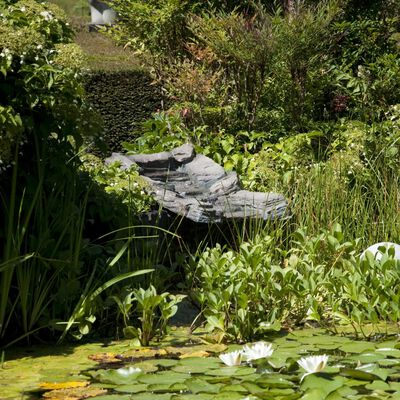 Velda Conjunto curso de água para jardim 80 cm