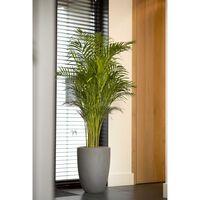 Capi Vaso elegante e baixo Urban Smooth 36x47 cm cinzento-escuro