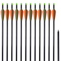 Flechas para arcos 76.2 cm/ 0,8 cm fibra de vidro 12 peças